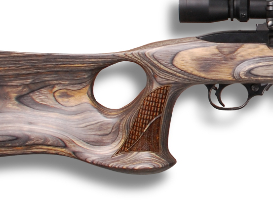Ruger 10/22 PALADIN Small Picture